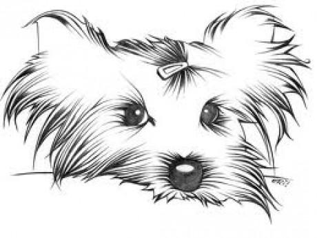 kreslené obrázky zvířat